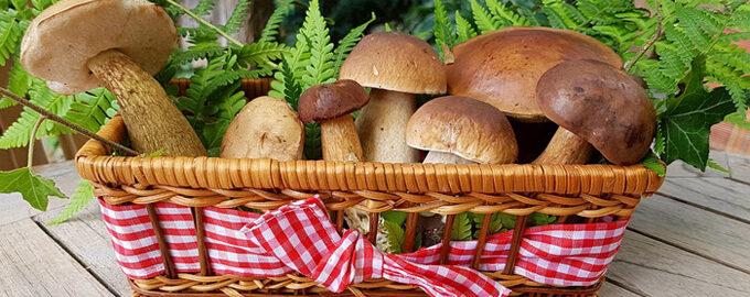 Начинка для пирогов с грибами